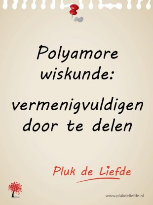 Polyamore wiskunde