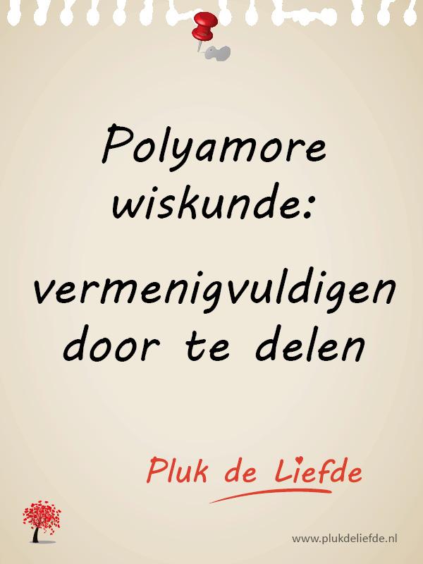 plukje - polyamore wiskunde
