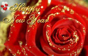 Pluk de Liefde Nieuwjaarsfeest 2018