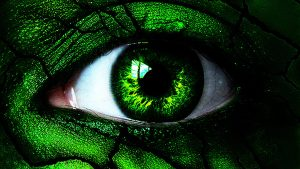 Hoe tem je het Groene Monster?