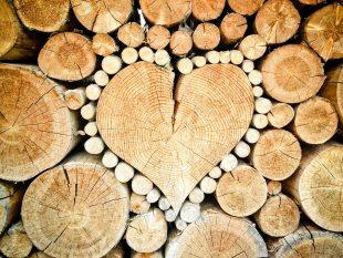 Poly Lief & Leed: Jij moedigt me aan mijn hart te volgen